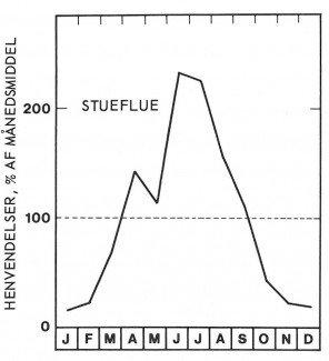 Sæson for stueflue
