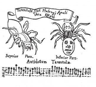 Nodeblad til Tarantelle-dansen