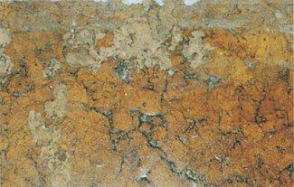 Frømøllarver gnavet i fugtigt trægulv