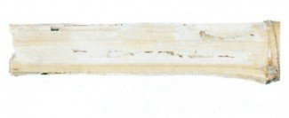 Spor efter bambusbukkelarver i bambus