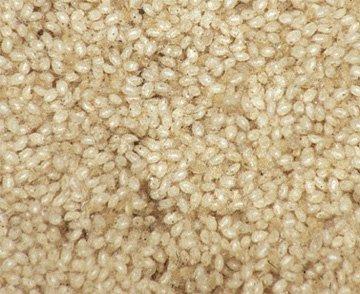 Lagermider er 0,1 - 0,6 mm