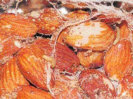 Larver af tofarvet frømøl i mandler